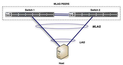 Arista Multi-Chassis Link Aggregation